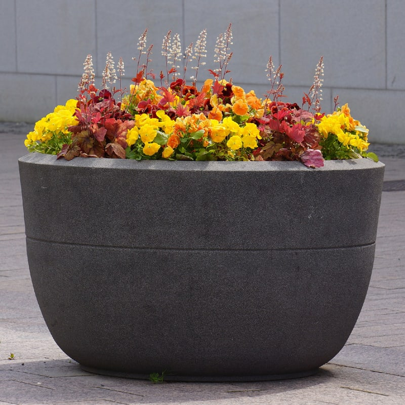 concrete planting flower pot