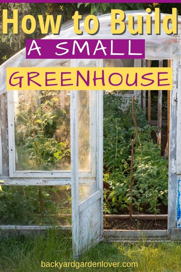 Don't let a small backyard keep you from enjoying herbs and vegetables throughout the year. Learn how to build a small greenhouse, no matter how little space you have. #greenhouse #yearroundgarden #gardening #organic #homestead #gardener #growyourfood #foodgardening