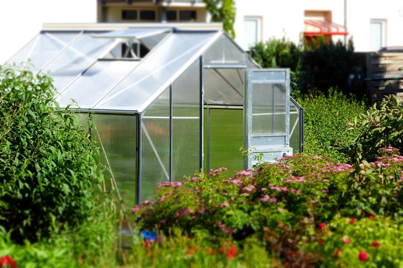 How To Build A Small Greenhouse In 8 Easy Steps Backyard