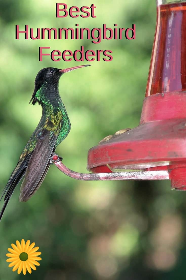 Enjoy these adorable birds right in front of your window. Here are the best hummingbird feeders that will attract them.