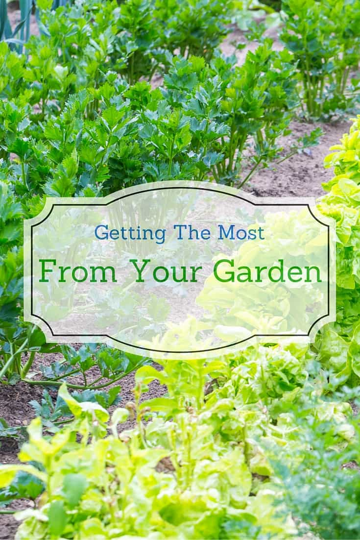 Getting the Most from Your Garden is easy once you organize yourself.