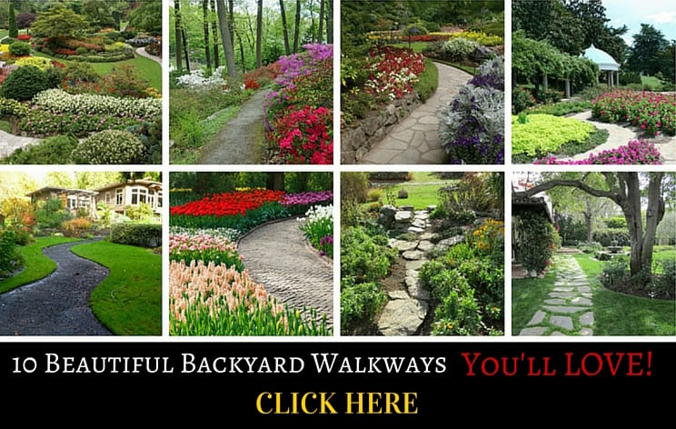 beautiful backyard walkways collage