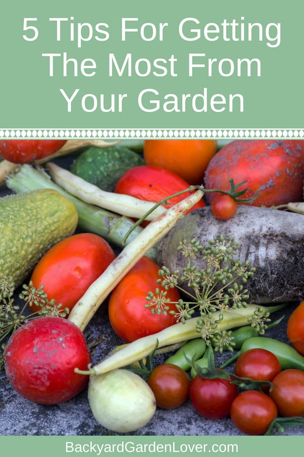 Ever wonder if your hard work in the garden will pay off? Here's how to get the most from your garden: 5 easy tips that will assure you of a good harvest