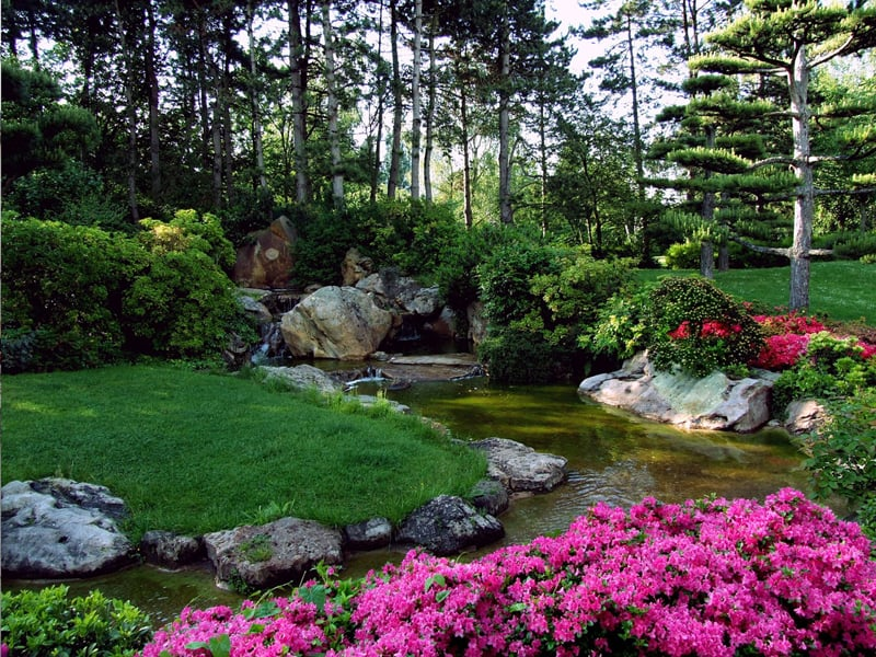 japanese-ornamental-garden