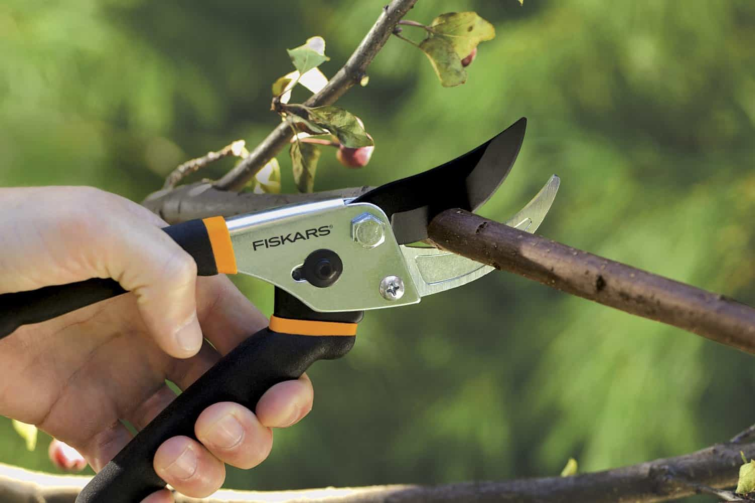 cutting a branch with Fiskars pruning shears