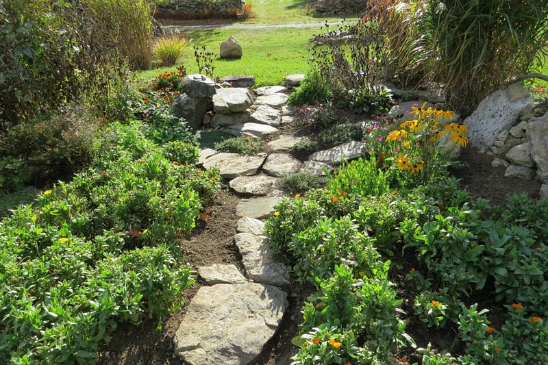 Here's a beautiful walkway between bushes. The rocks give this pathway a more rugged look, nice for those of us who enjoy a wilder look in our garden.
