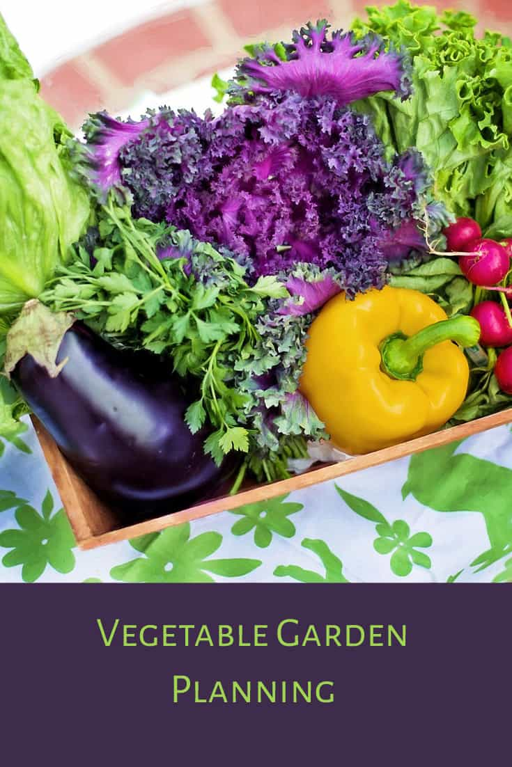 Vegetable garden planning should be an important part of your gardening experience.