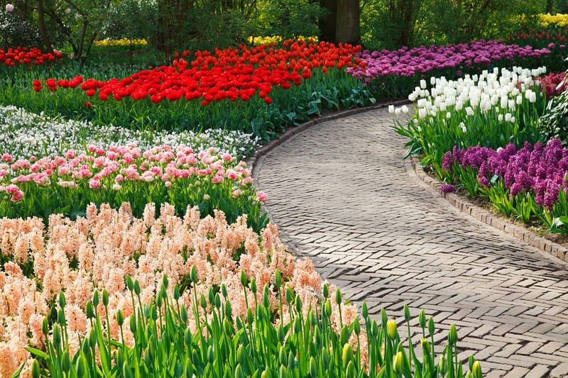 This zig-zagged brick walkway is beautiful and draws in the eye. Adn the nearby flowers are stunning!