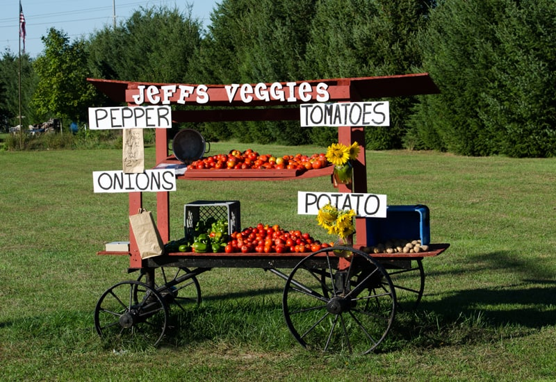 Veggie stand for selling extra product from your garden