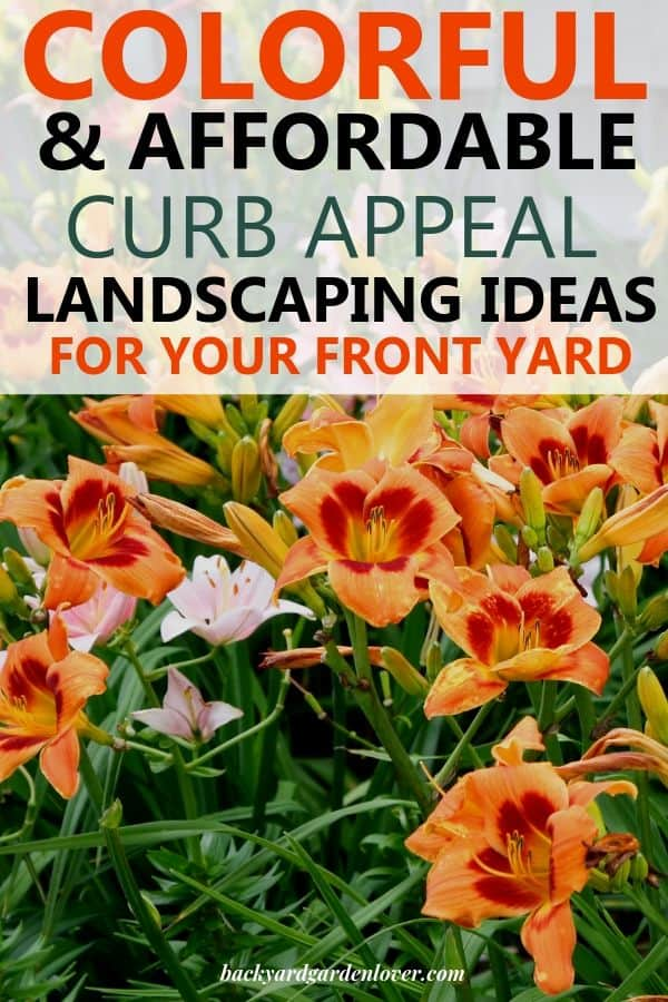 Need colorful and appealing curb appeal landscaping ideas? Here are my favorites, and I'm sure you'll love them too! #curbappeal #landscaping #flowers #colorfullandscape #flowers