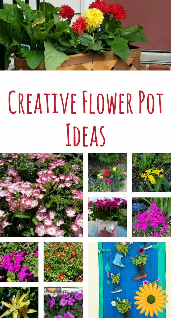 Creative flower pot ideas to add color to your space