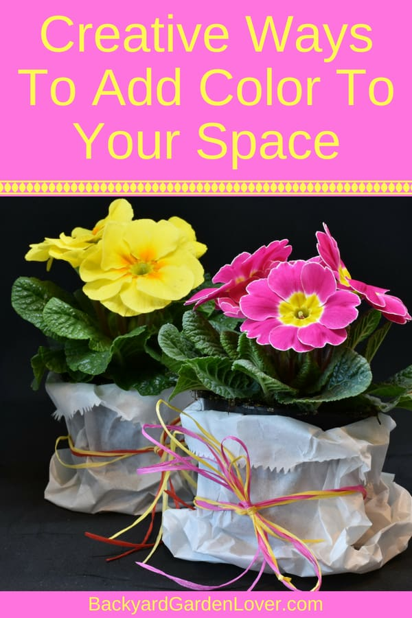 Need some quick ways to add color to your space? Here are some DIY ideas for unique colorful flower arrangements in pots you can add to your front porch, patio and even indoors. #flowers #color #popofcolor #colofulflowers #containergarden #hangingbasket #frontporchideas #smallgarden