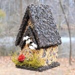How To Make Edible Birdhouses