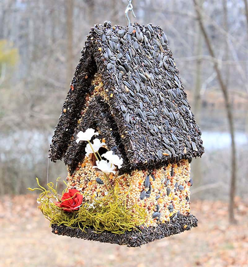 How to make edible birdhouses for your feathered friends