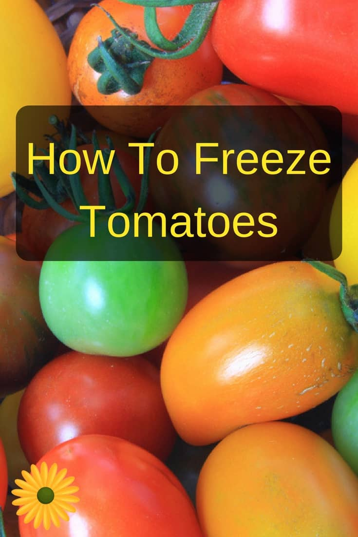 How To Freeze Tomatoes For Winter Backyard Garden Lover