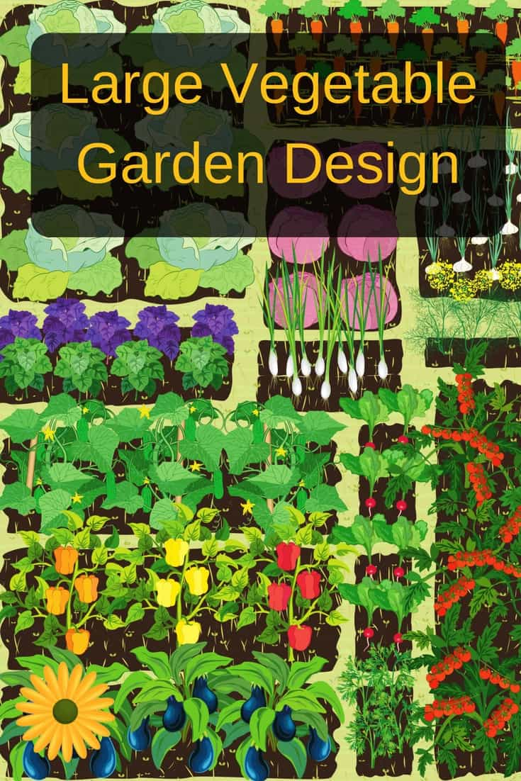 Large vegetable garden design doesn't have to be hard. Here's how you cna plan your large garden