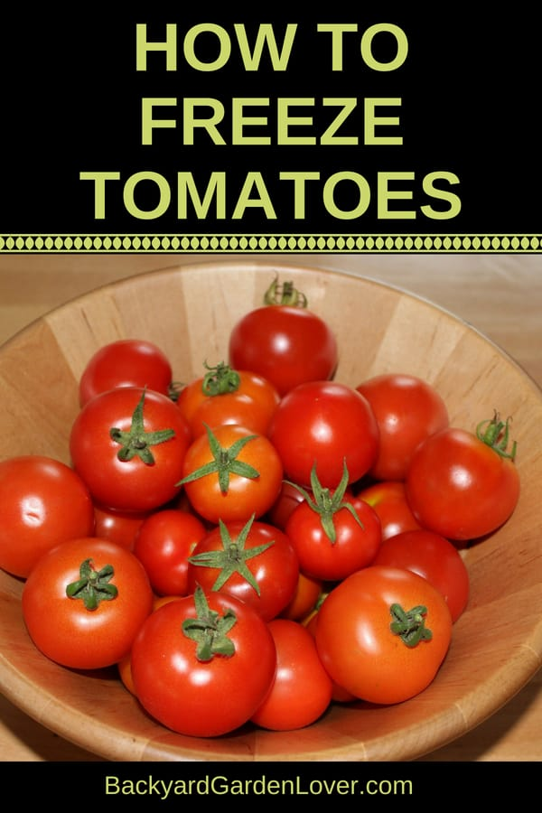 When your garden gives you tons of tomatoes, freeze them! Learn how to freeze tomatoes, so you can enjoy fresh from the garden tomatoes later to make soups, sauces, salsa and any other recipe that calls for tomatoes. Tomatoes can be frozen whole, sliced, diced and juiced. #tomatoes #frozentomatoes #harvest #preserveharvest #freshfromthegarden