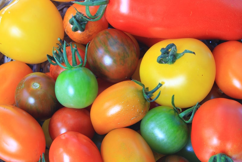 different types of tomatoes in a nice, colorful pile