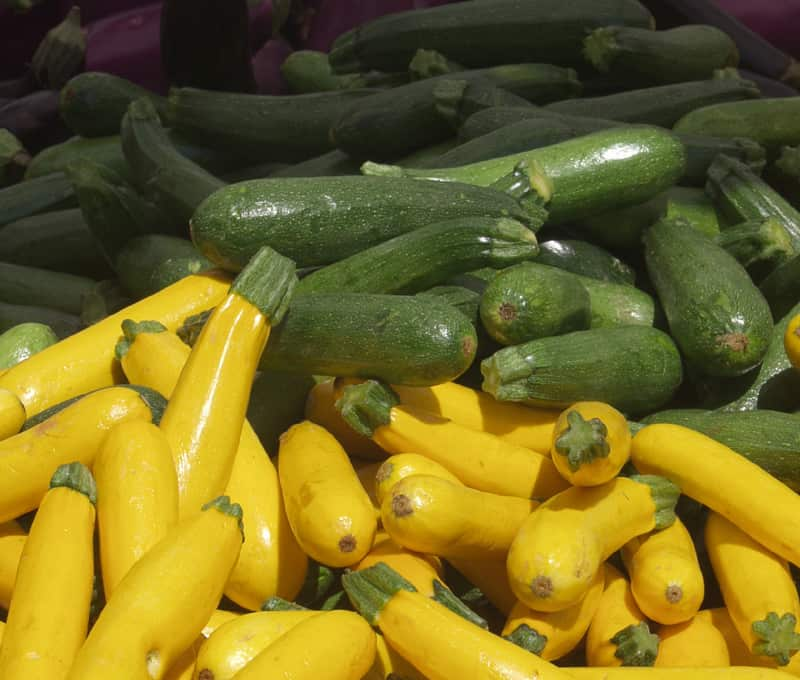 Lots of zucchini: learn how to freeze zucchini for later use