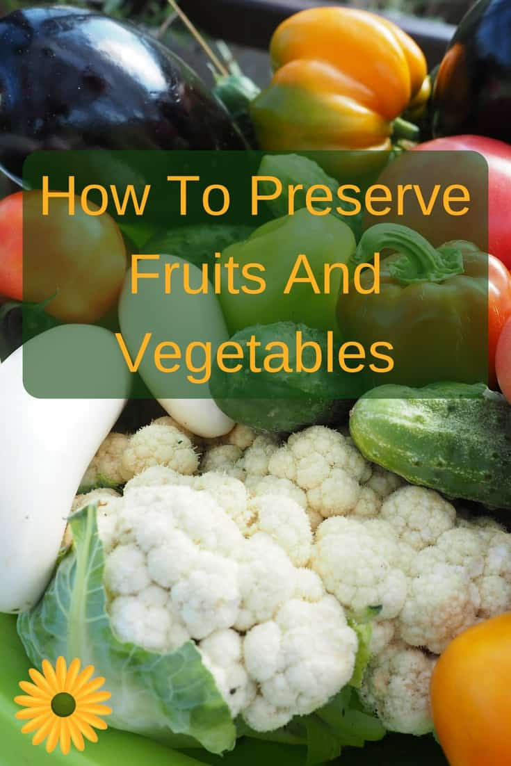 Got loads of veggies coming up from your garden or the produce market? Here's how to preserve fruits and vegetables to use up later in the year