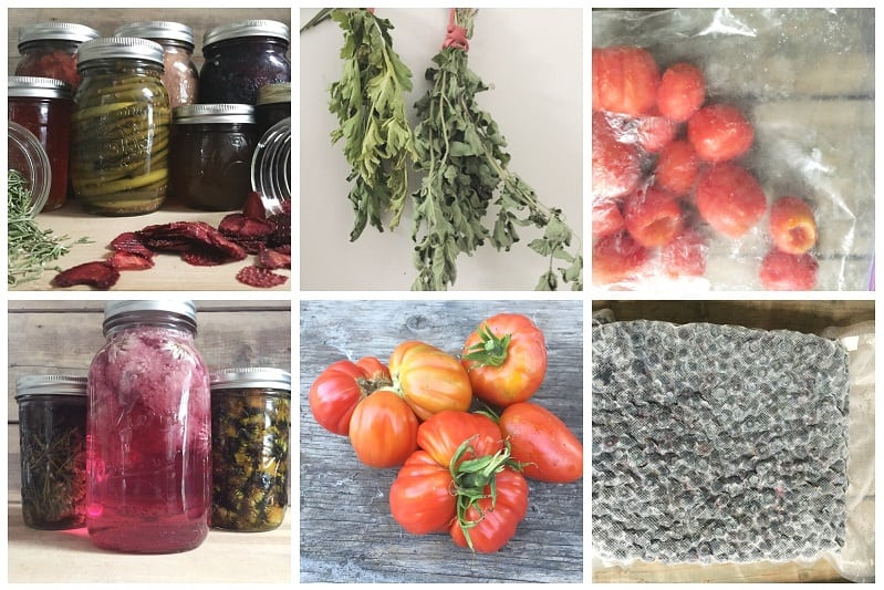Learn how to preserve garden harvest