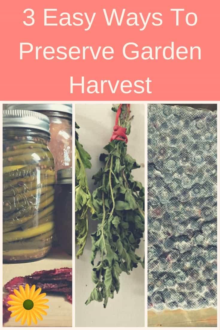 3 Easy Ways To Preserve Garden Harvest