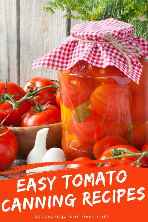 When your garden is producing way more tomatoes than you can possibly use, it's time to preserve some for later. Here are my favorite easy tomato canning recipes:pasta sauces, stewed cherry tomatoes, green tomato relish, and more #tomatoes #cherrytomatoes #canning #preserveharvest #harvest #organic #recipes