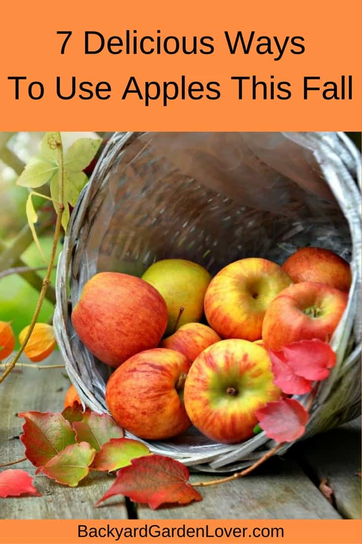 7 delicous ways to use apples this fall