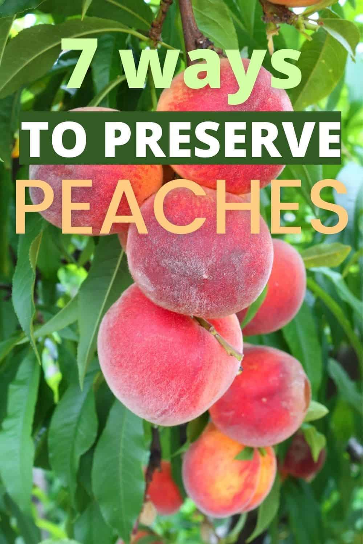 7 ways to preserve peaches