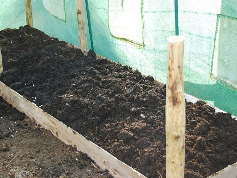 add top soil to lasagna bed