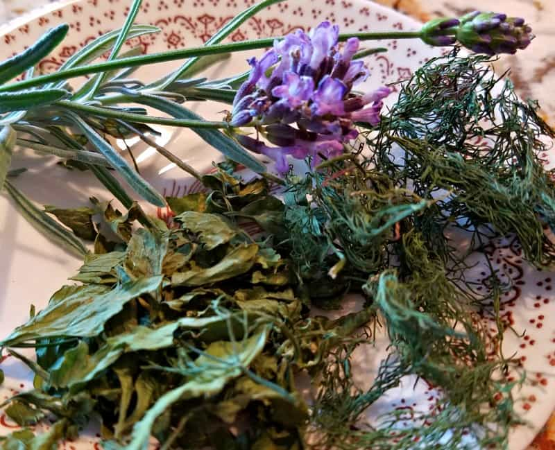 Dried herbs on a plate: lovage, dill and lavender. Learn how to dry herbs for winter.