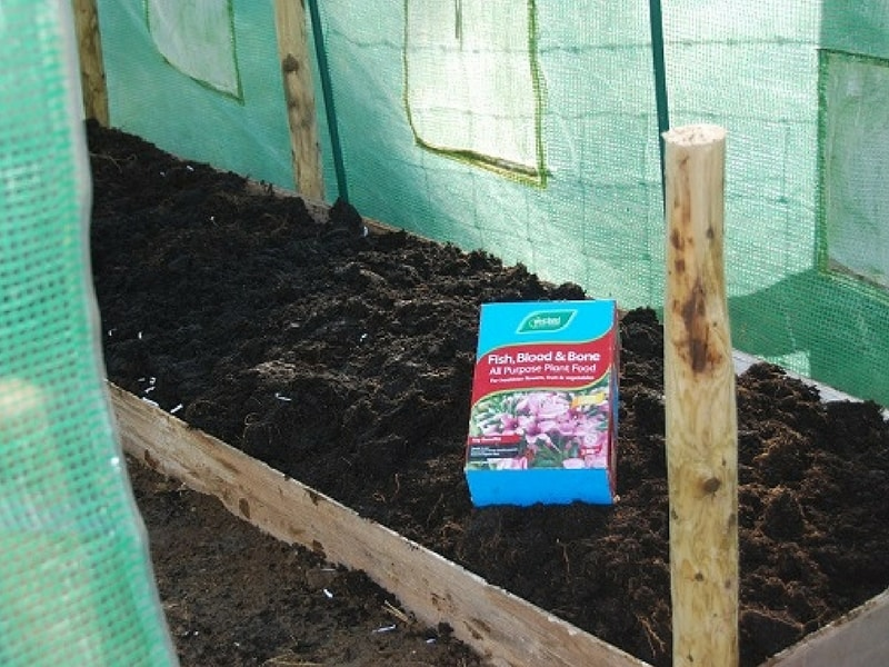 add some fish bone meal to your lasagna garden