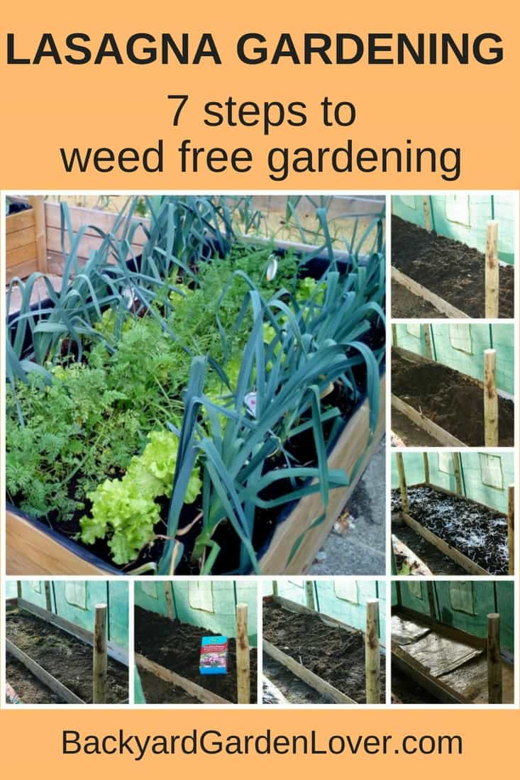 A collage of the steps for lasagna gardening - Pinterest image