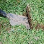 slice grass with a straight spade