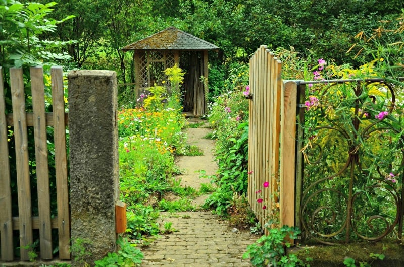 Path to a beautiful cottage garden shed