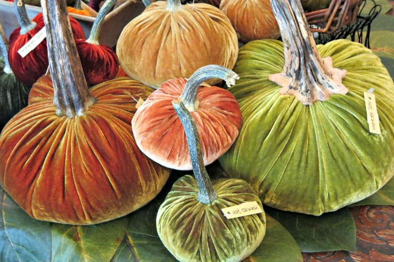 Fabric pumpkins for indoor fall decorating