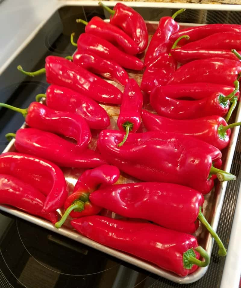 Red peppers in oven tray ready to roast