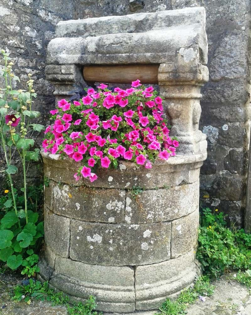 Old well decorated with cascading petunias