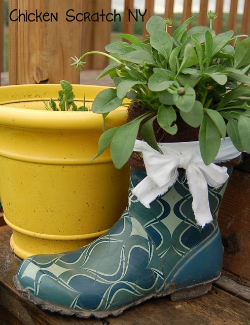 Greenery planted in a garden boot