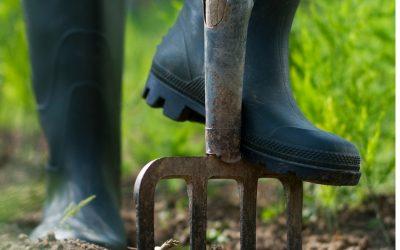 Best Gardening Shoes For Men
