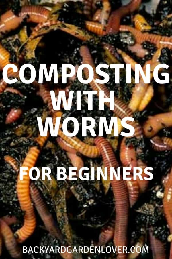 Composting with worms for beginners