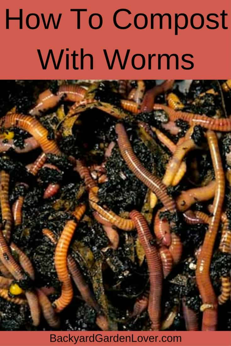 How to compost with worms