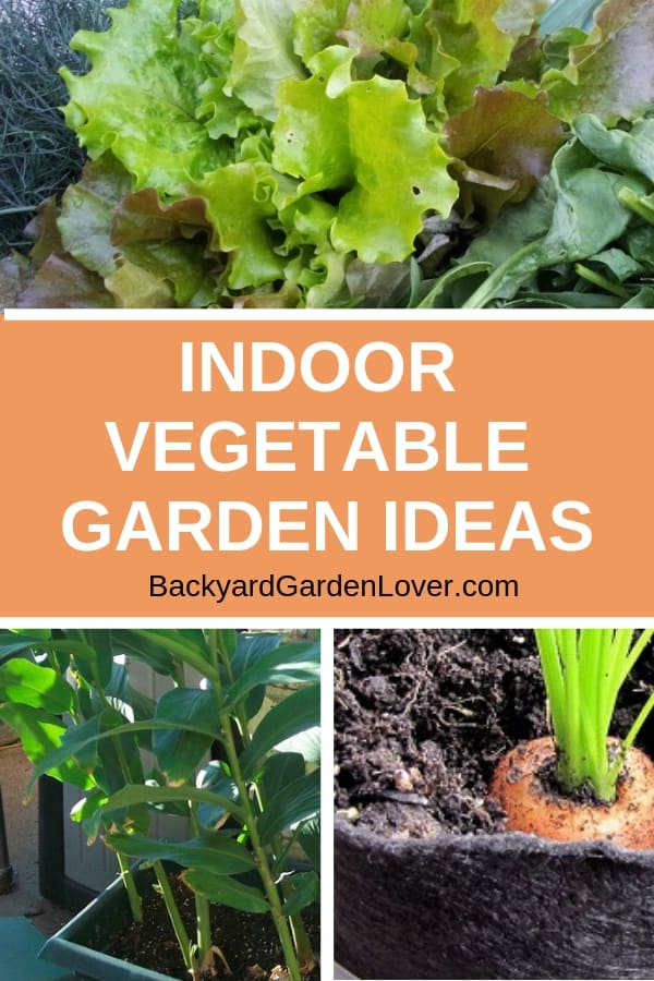 Not enough space in your backyard for a garden? Or maybe want to extent the gardening season into the winter? Try an indoor vegetable garden and enjoy fresh herbs and veggies even in the cold season. #indoorgarden #organic #gardening #gardeningtips #freshfood #