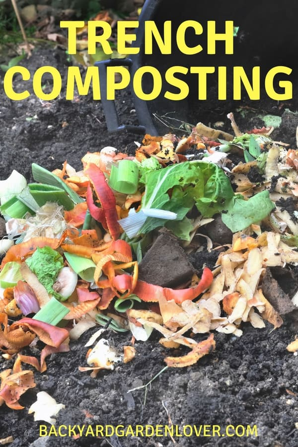 Trench composting is probbaly the easiest way to enrich your garden soil. Give it a try and watch your garden thrive!