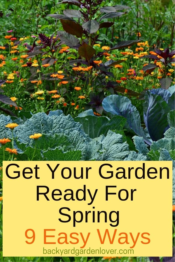 Get ready for spring with these easy steps: clean up, prune and trim, buy seeds, prepare soil and garden tools, etc. Read this for more details. #spring #garden #springgarden #flowers #vegetables #backyardgarden #mygarden #bgl #prettyflowers #gardeningtips