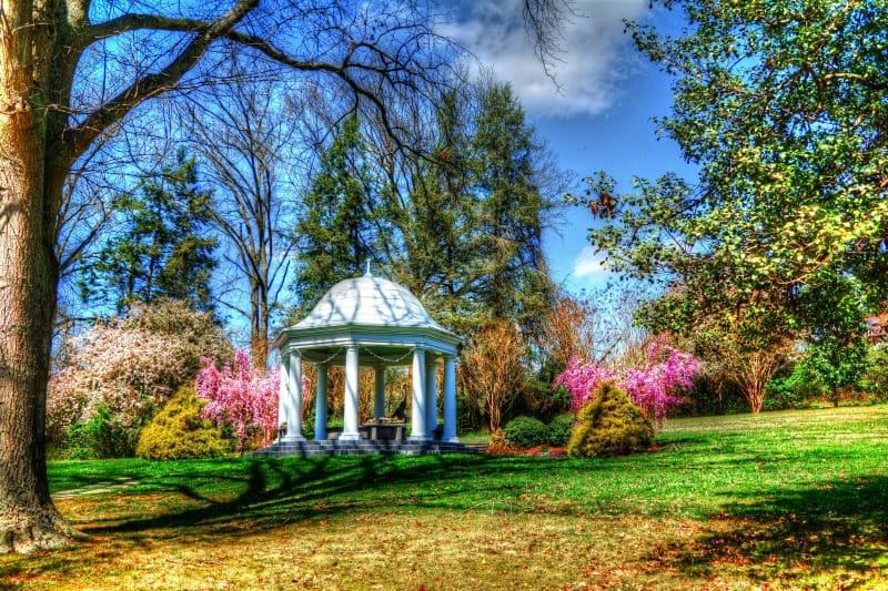 Gazebo surronded by spring flowers