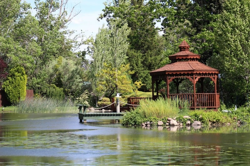Wooden gazebo by a duck pond