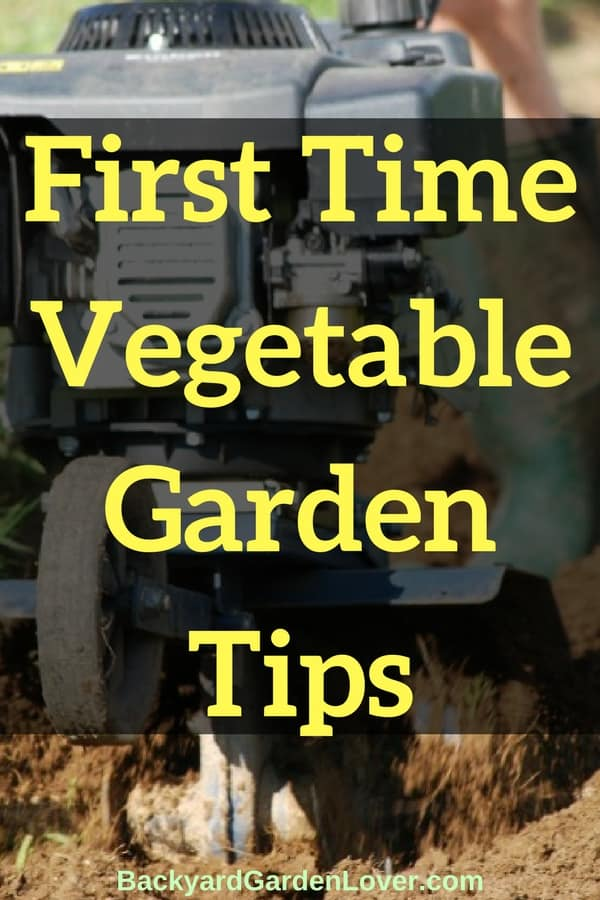 First-time vegetable garden tips