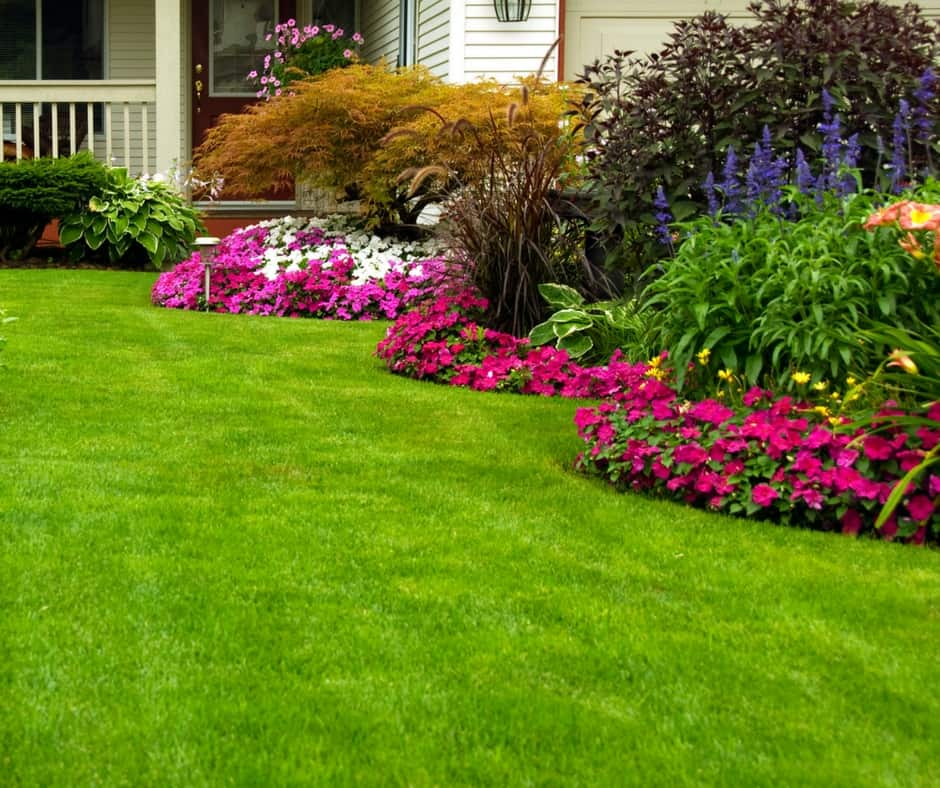 Beautifully manicured lawn with lots of pretty flowers
