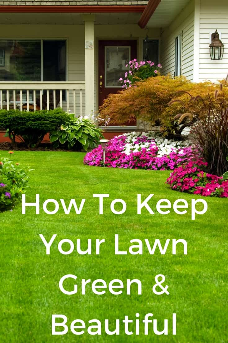 How to keep your lawn green and beautiful